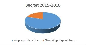 pie graph of wage versus non-wage expenditures
